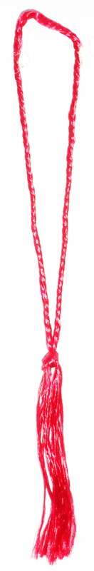 Floss Tassel-Pack of 25 pcs